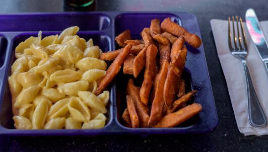 kids homemade macaroni and cheese